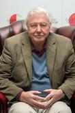 Welsh Plant Named After Sir David Attenborough