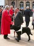 Cathedral and David Blunkett