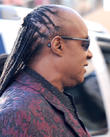 Stevie Wonder Musician Suing Blogger For Defamation