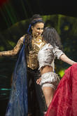 Cirque, Soleil European and Amaluna