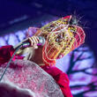 Bjork Stuns Fans With Surprise Press Conference At Icelandic Festival