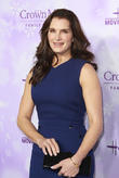 Brooke Shields' Alleged Stalker Blasts Actress For 'Perjury'