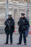 Armed Police Officers and View