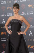 Penelope Cruz Had To Fight To Get New Film Made