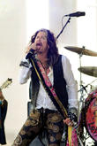 Steven Tyler Turns Wedding Singer For Racing Driver And Polo Player