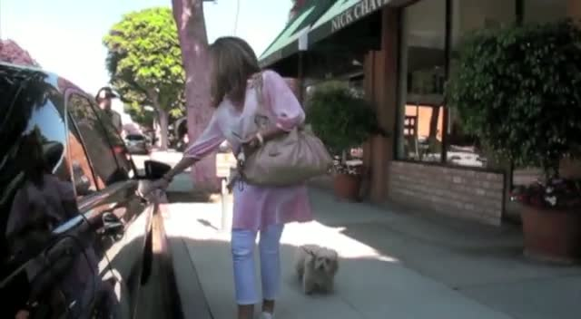 Maria Shriver leaving a hair salon with her dog