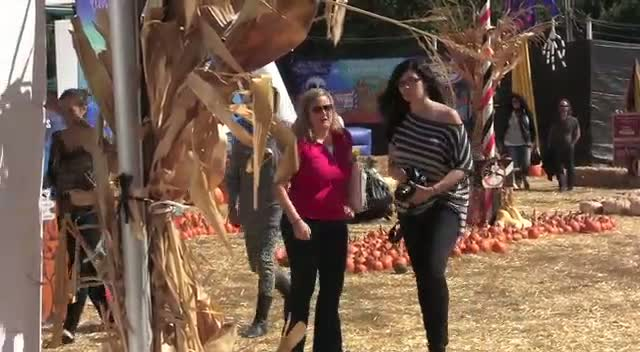 Heidi Klum Seen Carving A Pumpkin