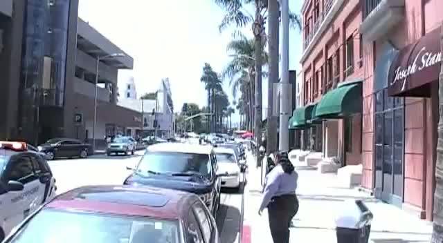 Laura Dern Gets A Ticket Despite Paparazzi Pleas To Parking Official