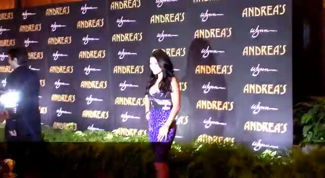 Arianny Celeste Poses In Purple At Vegas Restaurant Opening