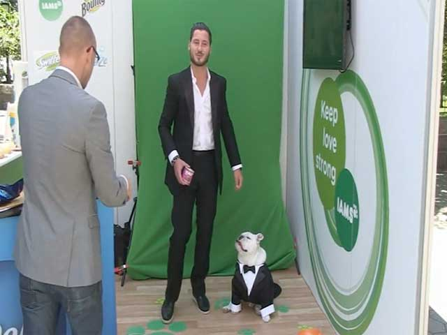 Val Chmerkovskiy And His Tuxedoed Pooch Arrive At P&G launch NY - Part 2