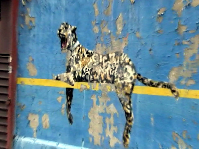 Banksy Unleashes Wild Cat Graffiti On Yankee Stadium Wall